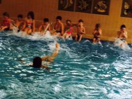 schwimmkurs085.jpg