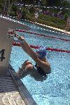 Schwimmer beim Start
